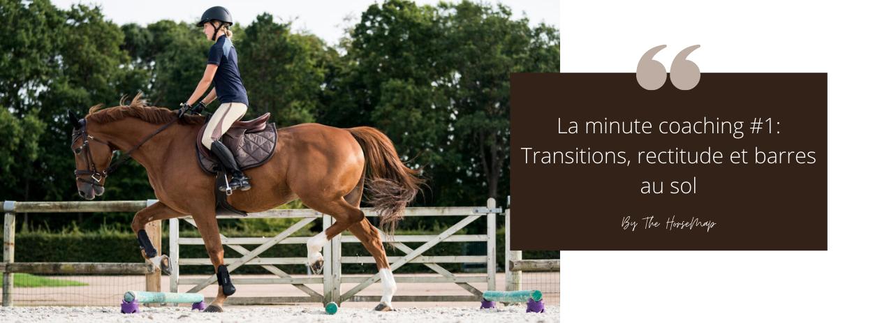 exercice barre au sol cheval