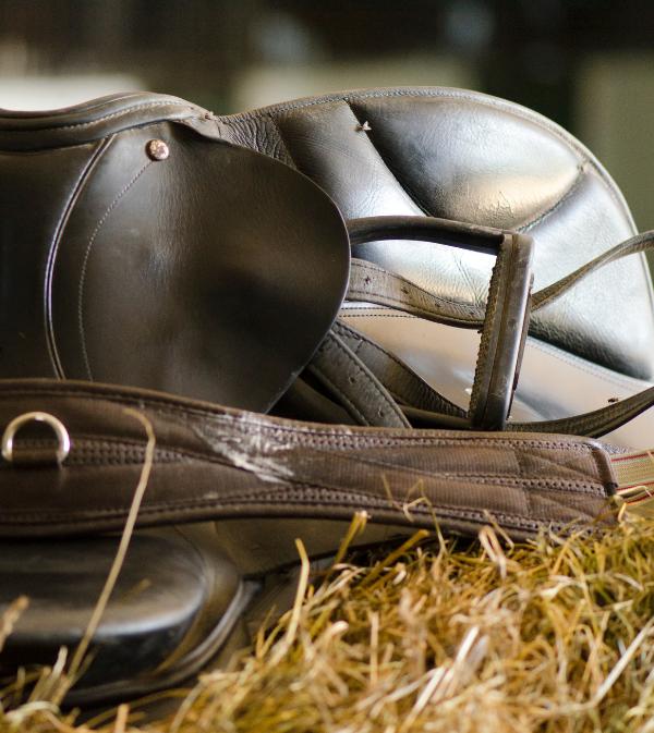 categorie materiel seconde main HorseMap
